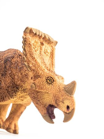 Vagaceratops  Triceratops  Dinosaur on white background .