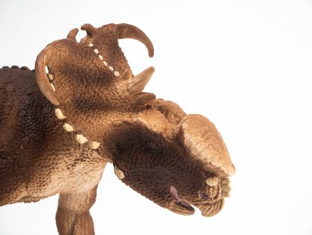 Pachyrhinosaurus Dinosaur on white background . Banco de Imagens