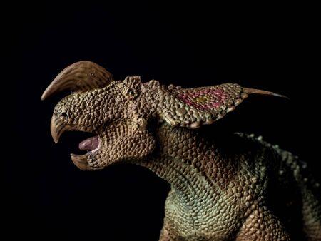 Einiosaurus Dinosaur on black background .