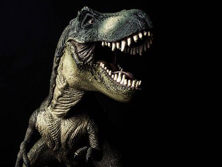 Tyrannosaurus T-rex dinosaur on black  background  . Reklamní fotografie - 131287722