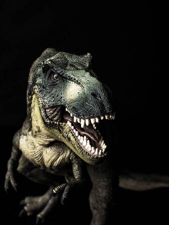 Tyrannosaurus T-rex dinosaur on black background . Stock fotó