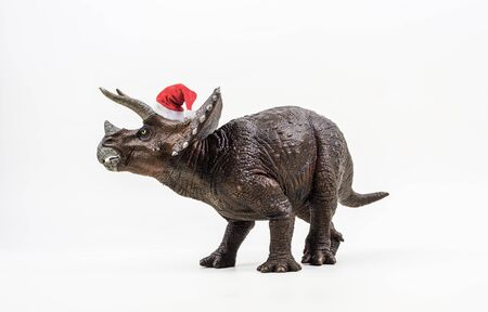 Triceratops ,dinosaur with Christmas hat on white background . Stock fotó