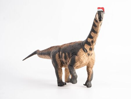 Camarasaurus Dinosaur with Christmas hat on white background