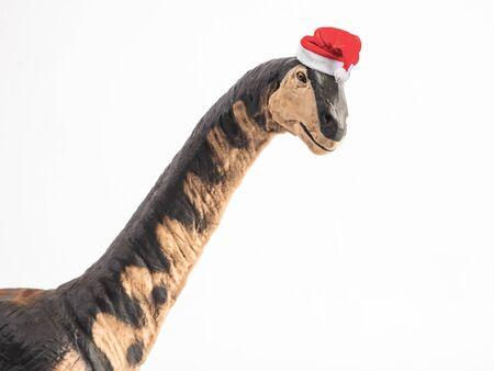 Camarasaurus Dinosaur with Christmas hat on white background