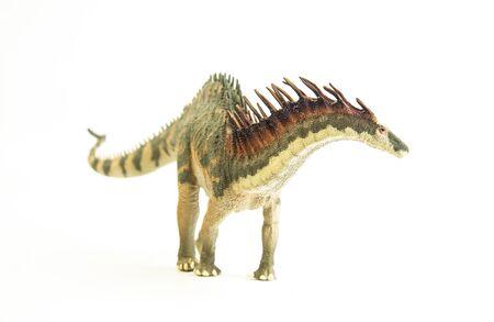 Amargasaurus , dinosaur on white background . Stock Photo