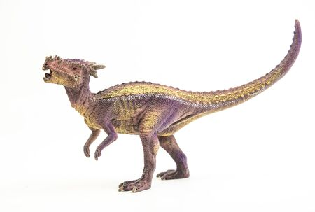 Dracorex , dinosaur on white background .