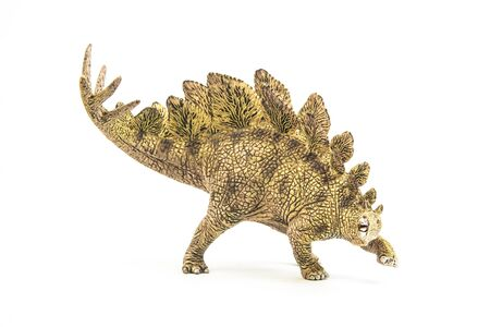 Stegosaurus , dinosaur on white background . Reklamní fotografie