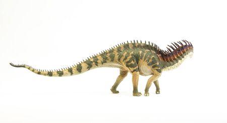 Amargasaurus, dinosaur on white background Stock Photo
