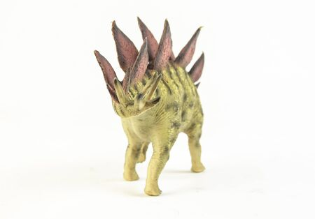Stegosaurus, dinosaur on white background