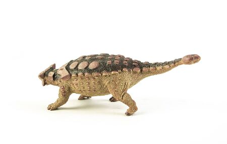 Ankylosaurus , dinosaur on white background