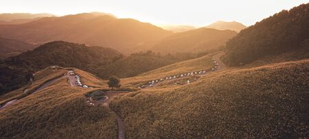 aerial view landscape of Mountain in Twilight time nature flower Tung Bua Tong Mexican sunflower field ,Mae Hong Son,Thailand .