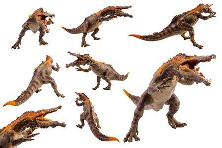 Baryonyx ,dinosaur on white background . Фото со стока