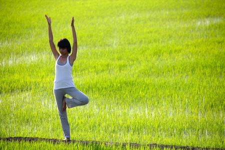 girl practicing yoga,standing in paddy field photo