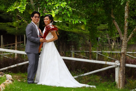 Newly married couple posing in beautiful garden photo