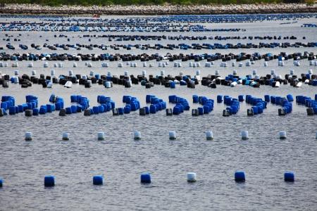 Many Rows of Pontoons Floating on Sea Zdjęcie Seryjne