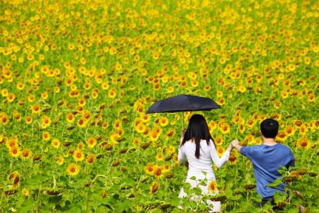 Loving Couple in Sunflower Field