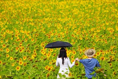 Loving Couple in Sunflower Field Zdjęcie Seryjne - 24918655