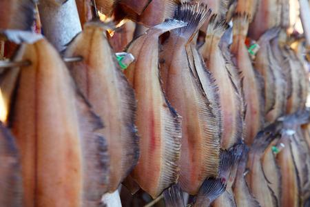 Dried Fish under Sunlight in Hokkaido, Japan Zdjęcie Seryjne - 34486719