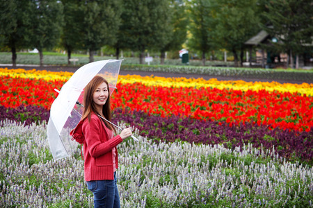 Woman with Umbrella at Tomita Lavender Farm, Hokkaido Zdjęcie Seryjne - 34486875