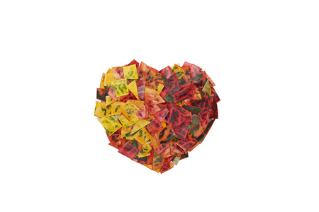 Heart from Colorful Leaves Zdjęcie Seryjne - 37207307