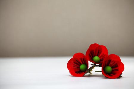 Red Poppy Flowers Zdjęcie Seryjne - 43677122