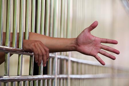 jail: Hand in Jail Stock Photo