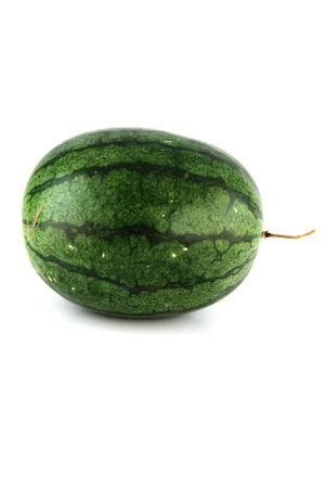 The Focus watermelon on white background. photo