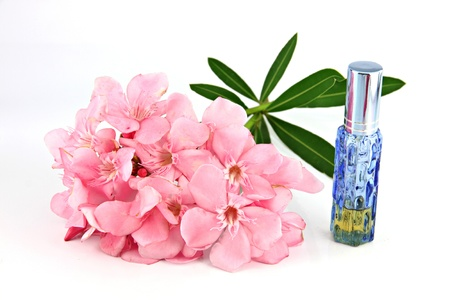 Bouquet of light pink flowers and Blue Perfume bottles on the white background. photo