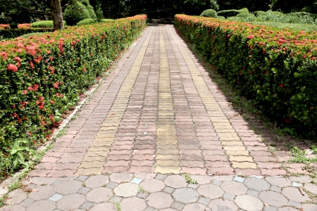 The Walk in Park and Pathway paved with bricks. photo