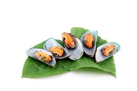 Mussels on vegetables  photo
