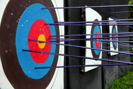 archery target: The Picture Target archery and many arrow after shoot