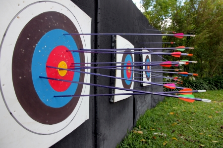The Picture Target archery and many arrow after shoot  photo