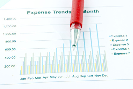 Closeup Picture Red Pen on the Business graph  photo
