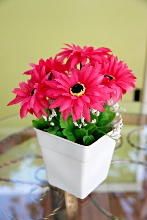 Pink flowers in a white potted and Placed on glass table with soft yellow background  photo
