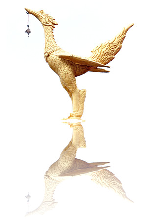 Golden swan statue on white background and Reflective. Stock Photo