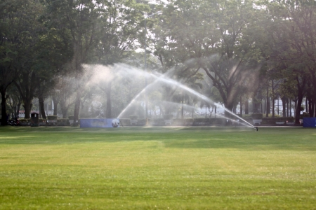 Lawn watering in Morning at Park  photo