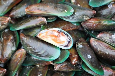 green mussel in seafood market for the background image. photo