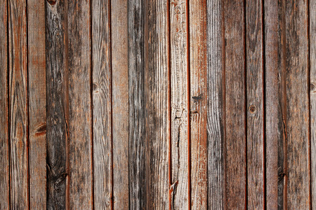 texture of old wood for background. photo