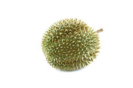 durian of tropical fruit in Thailand on the white background. photo