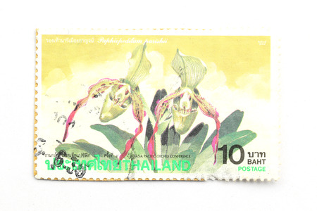 asia pacific: BANGKOK - A old stamp printed by Thailand Post circa 1995 and shows image of Asia Pacific and Plant Seedlings,THAILAND.