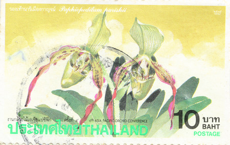 asia pacific: BANGKOK - A old stamp printed by Thailand Post circa 1995 shows image of Asia Pacific and Plant Seedlings,THAILAND. Editorial