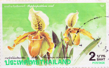 asia pacific: BANGKOK - A old stamp printed by Thailand Post circa 1992 and shows image of asia pacific orchid conference,THAILAND.