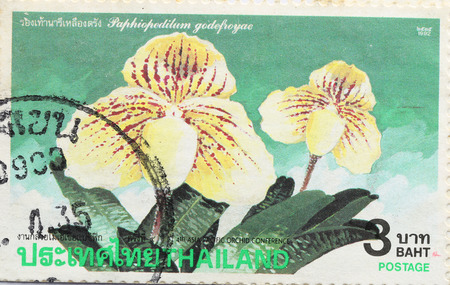 circa: BANGKOK - A old stamp printed by Thailand Post circa 1992 and shows image of Yellow flower,THAILAND.