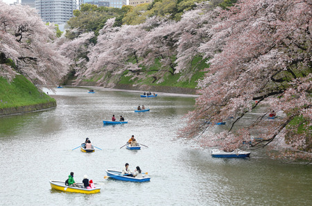 Chidorigafuchi park in Tokyo, Japan