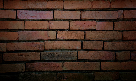 dark brown: Old brick wall for the background.