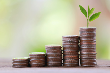 silver coin stack and treetop in business growth concept on wood floor with colorful nature background.