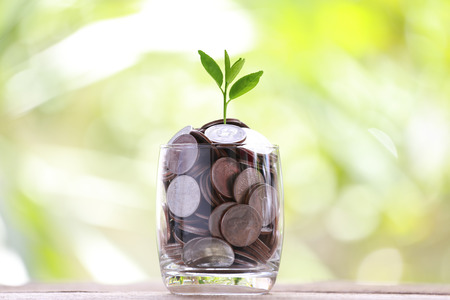 wood floor: silver coin in glass is placed on a wood floor and treetop growing with colorful bokeh background for business concept image.
