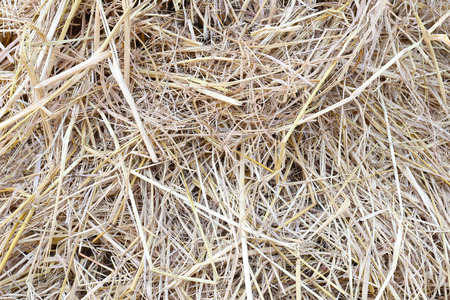 haystack: stack straw or haystack for nature abstract background. Stock Photo