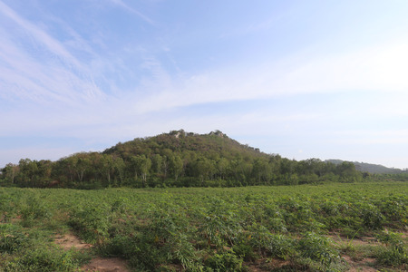 agricultural area: countryside view of green mountain in the agricultural area Thailand.