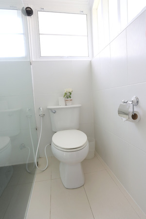 house ware: Sanitary ware object of bathroom interior in the house.